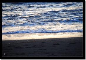 Meer-oder-lieber-weniger