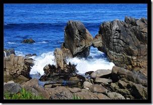 Pacific-Rock