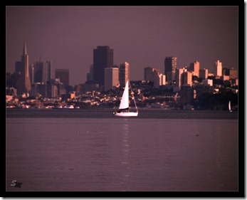 Skyline-San-Franzisco