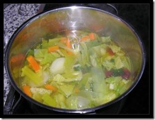 Gemüsebrühe1