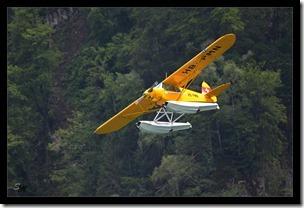 Wasserflugzeug-gelb