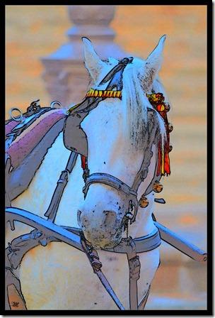 Pferdezeichnung