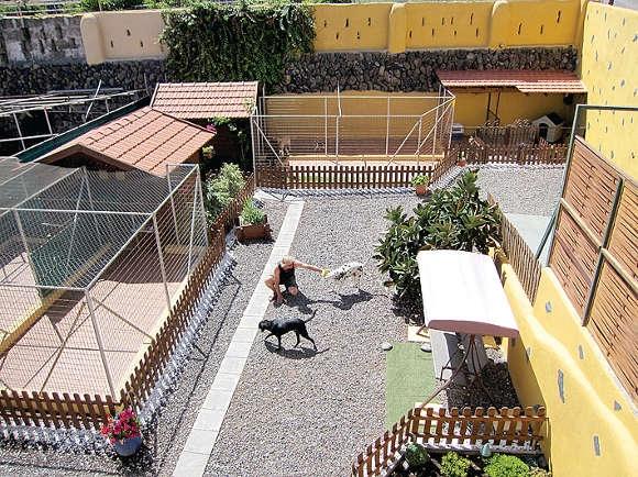 """Teneriffa - La Caleta - 24.10.2014 - Im Tierhotel Lilly in La Caleta im Nordwesten von Teneriffa finden sie Antwort darauf. In einer liebevollen Atmosphäre warten vier große und zwei kleine Hundehäuser mit Auslauf darauf, bezogen zu werden. Im Katzenhaus mit Außengehege und Kletterbaum können maximal zehn Katzen ein vorübergehendes Domizil finden. Zwei der Hundeterrains sind so überdacht, dass sie auch von Hund und Katze zusammen bewohnt werden können. Das bietet sich zum Beispiel an, wenn die beiden gewohnt sind, zusammenzuleben. Tierhotel-Betreiberin Angelika Duprée lebt selbst seit Jahrzehnten mit Hund und Katze. Sie ist daher im Umgang mit den Vierbeinern geübt und weiß, was sie brauchen. Genauso kennt sie aber die Bedenken, die die Halter plagen, wenn sie ihre Lieblinge abgeben. Es spricht für sich, dass sie inzwischen zahlreiche Stammkunden hat, die immer wieder kommen. Bei ihr finden auch alte Hunde, die eine besondere Pflege oder Medikamente brauchen, Aufnahme. Die ältesten tierischen Urlauber, die im Tierhotel Lilly zu Gast waren, waren schon 18 Jahre alt. Auch sie haben das Feriendomizil wohlbehalten verlassen.   Frischer Wind   In den Sommermonaten wurden einige Dinge vor Ort noch verbessert. So wurden Abwasserkanäle neu verlegt, damit das Regenwasser nicht mehr zu den """"Hunde-Suiten"""" laufen kann. Zudem wurde frisch gefliest und alles hübsch gemacht. Auch die Zufahrt wurde mit frischem Kies von Schlaglöchern befreit. Das interessiert zwar die Hunde nicht, aber für deren Frauchen und Herrchen ist es angenehmer. Gleich beim Eintreffen ist zu spüren, dass es im Tierhotel Lilly auch für die Vierbeiner schön ist. Sie haben regelmäßig Auslauf, werden spazieren geführt oder dürfen sich auf der eingezäunten Spielwiese austoben. Auch Streicheleinheiten und Ansprache gibt es zur Genüge. So gesehen, können die Halter ganz beruhigt in Urlaub fahren und sich sicher sein, dass ihre Vierbeiner in den besten Händen sind und ebenfalls Ferien machen. Schöner ist es wirklich"""